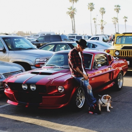 Lewis Hamilton Takes His Bulldog For a Spin In His Classic Mustang GT500
